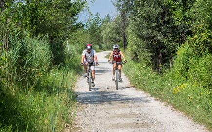 Ein Paar fährt beim Urlaub im 4-Sterne Hotel am Ossiacher See mit dem Rad einen Schotterweg entlang
