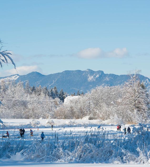 der Eislaufplatz im Winterurlaub mit Hund